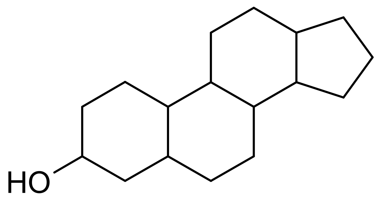 Graphic showing the structural formula of sterol.